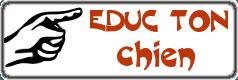 Eductonchien.net - guide et conseils de dressage pour chien