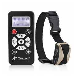 collier dressage tera a+trainer