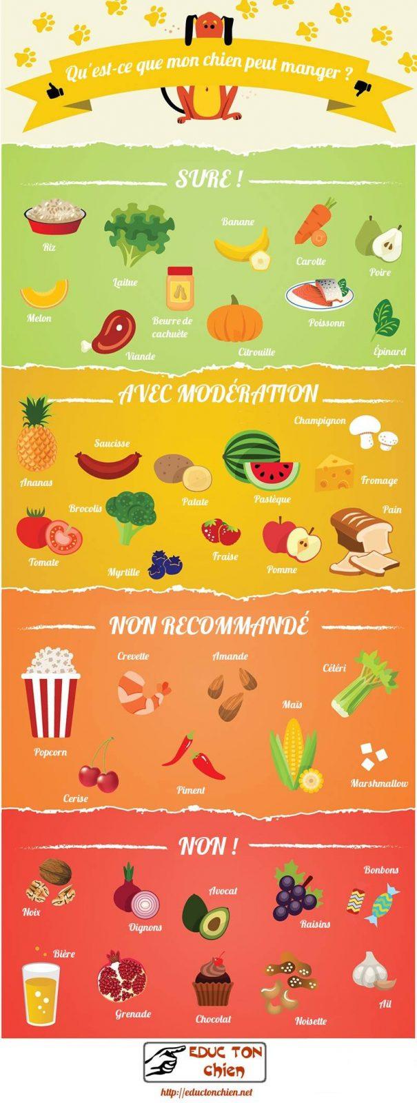 infographie aliments conseilleés et interdit pour les chiens
