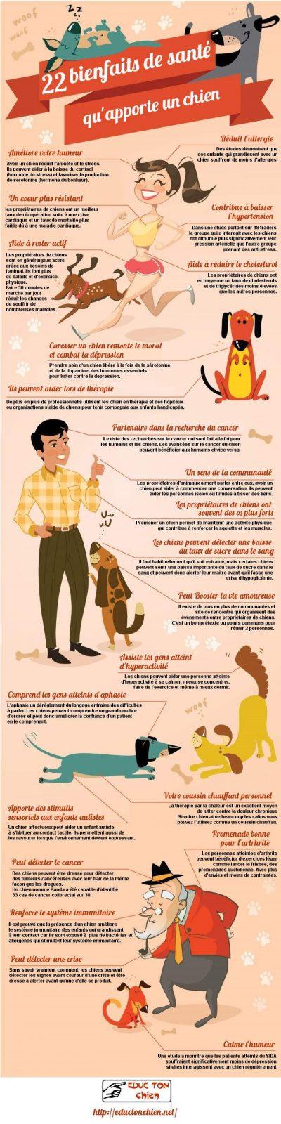 infographie des bienfaits pour la santé qu'apporte un chien