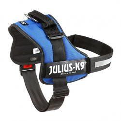 harnais pour chien Julius k9 bleu