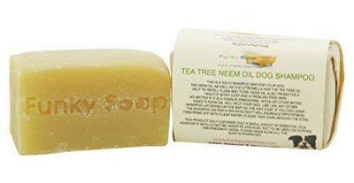 Savon shampoing Funky Soap Tea tree